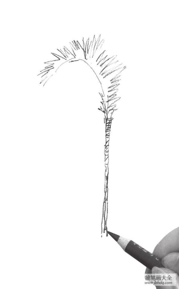 [素描树的画法]素描树丛的绘画画法