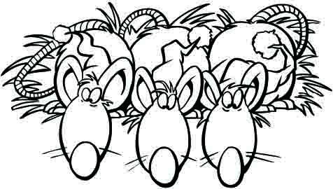 老鼠图片简笔画|简笔画3只老鼠