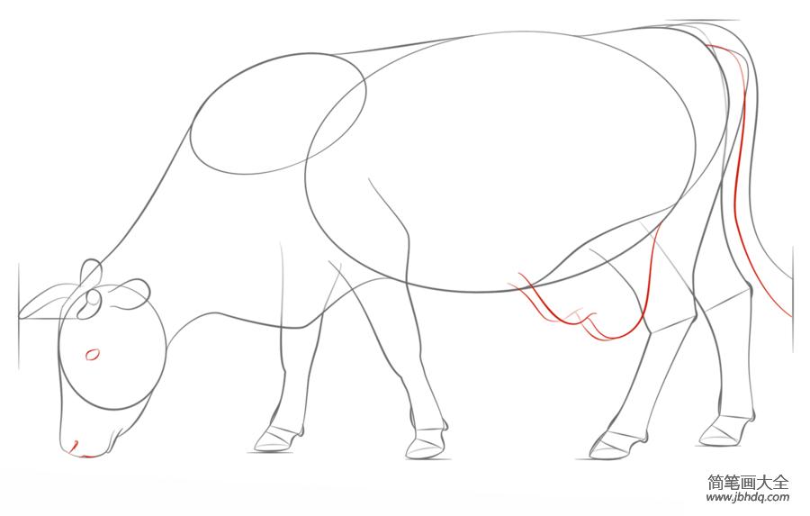如何画一头牛