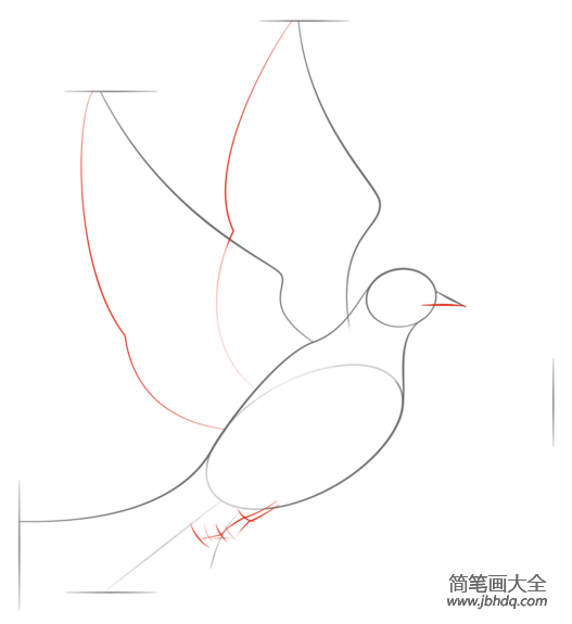 如何画和平鸽子和橄榄枝