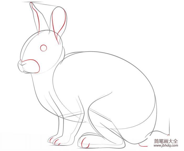 如何画兔子
