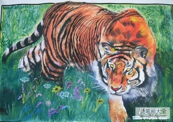 老虎的特点_优秀老虎儿童画教师范画美术绘画作品:草地里的老虎