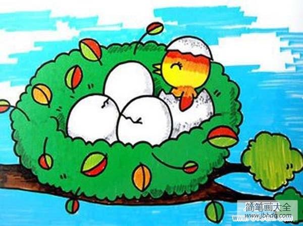 刚出生的小鸟吃什么|刚出生的小鸟儿童画图片