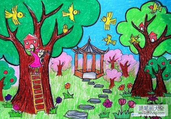 小鸟乐园阅读答案_关于小鸟乐园儿童画图片大全