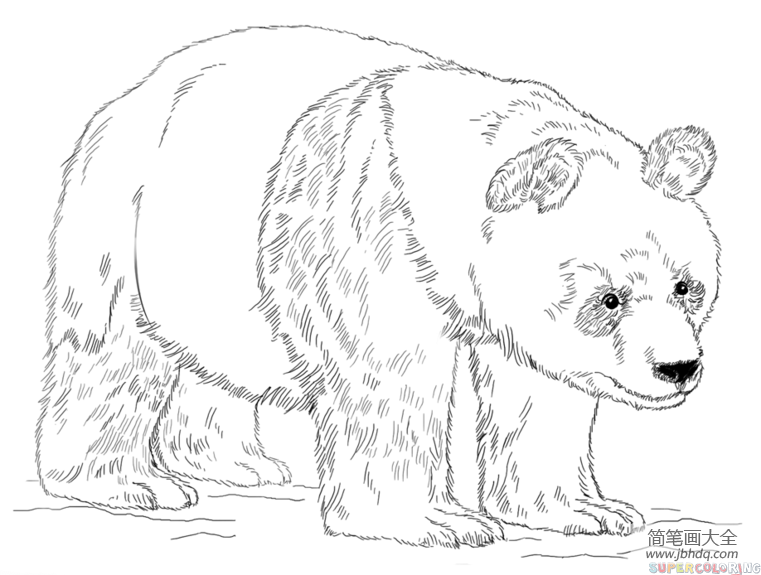 大熊猫怎么画简笔画_如何画大熊猫简笔画