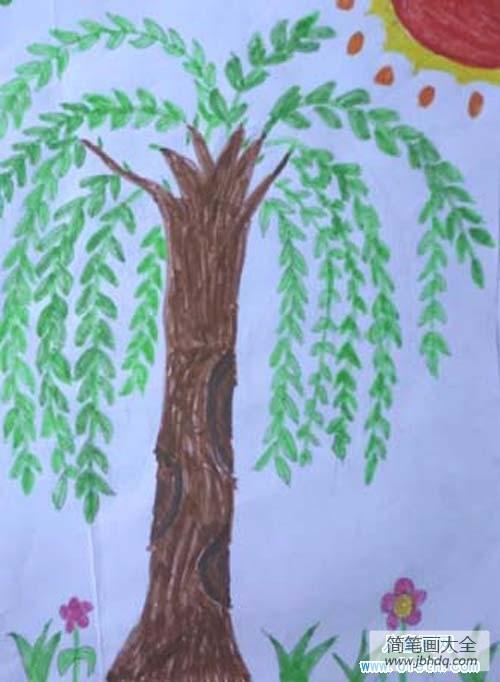 春天的柳树描写|春天的柳树儿童画图片