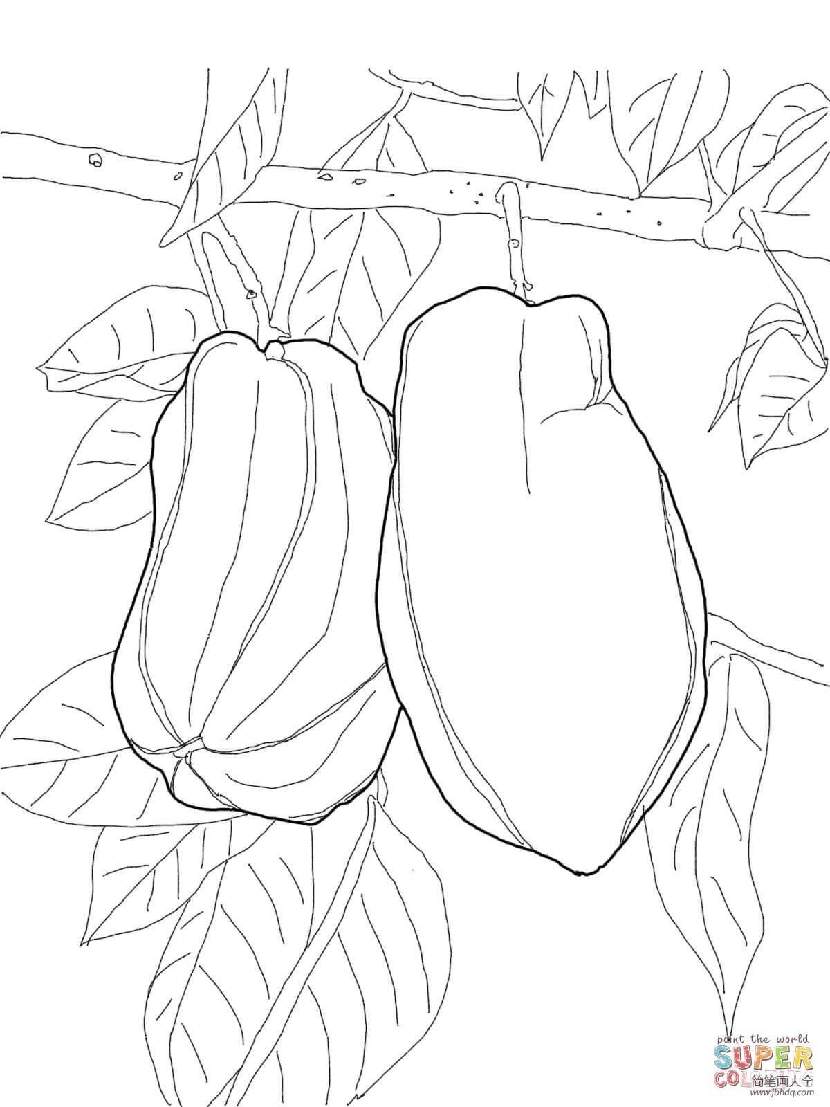 树上的杨桃简笔画图片大全_树上的杨桃简笔画图片