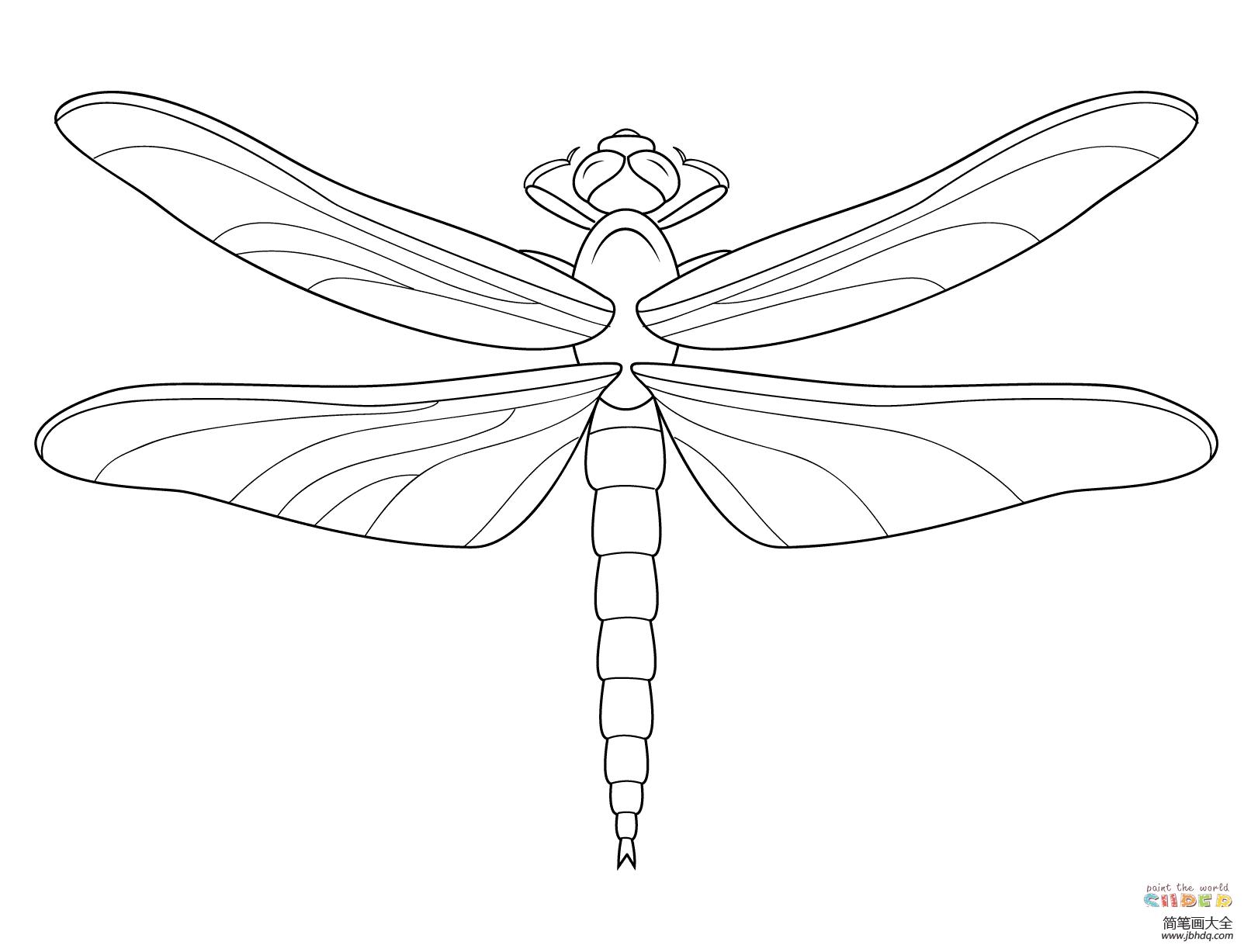 简单的蜻蜓怎么画_蜻蜓怎么画简单又漂亮