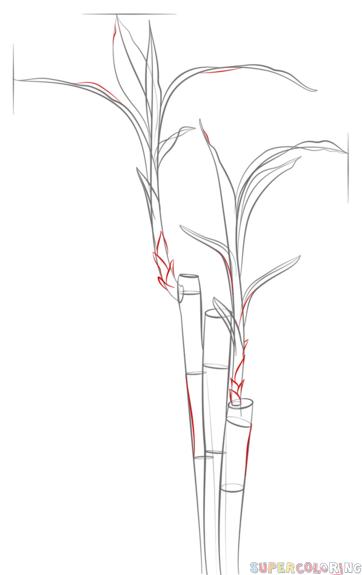如何画竹子