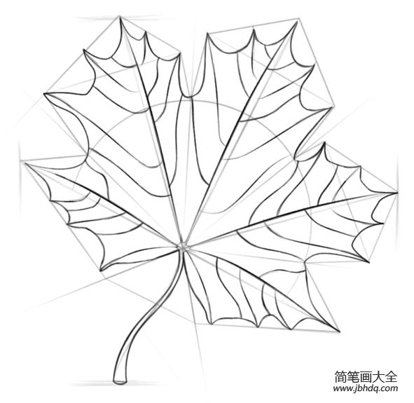 如何画枫叶